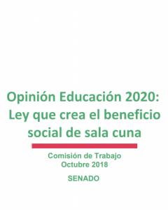 Foto de Opinión Educación 2020: Ley que crea el beneficio social de sala cuna